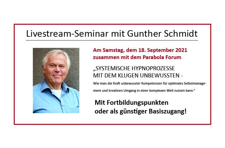 Livestream-Seminar Schmidt