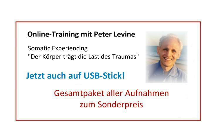 Online-Training Levine