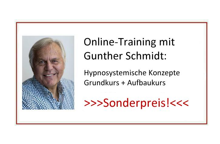 Online-Training Gunther Schmidt