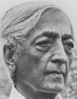 Krishnamurti, Jiddu: Brockwood Vorträge - Band 1
