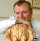 Spitzer, Manfred: Wie lernt das Gehirn?