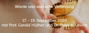 Levine, Peter A./ Hüther, Gerald: 11. Zürcher Traumatage - Set aller Aufnahmen